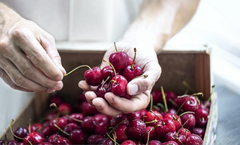 Fruchtig und lecker: Frisches Obst für Alpe Pragas Marmeladen, Sirupe und Chutneys