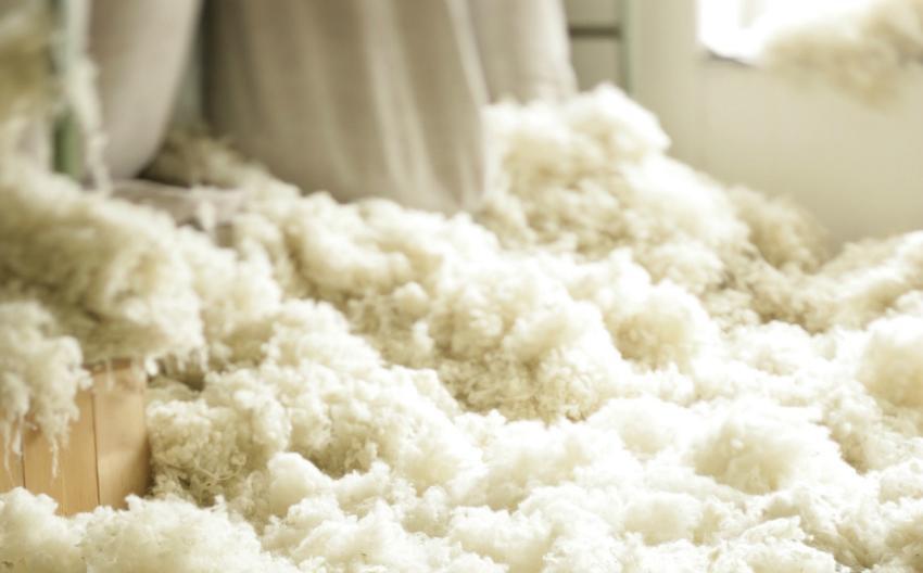 Schafswolle ist seit Jahrtausenden ein beliebtes Material für Kleidung