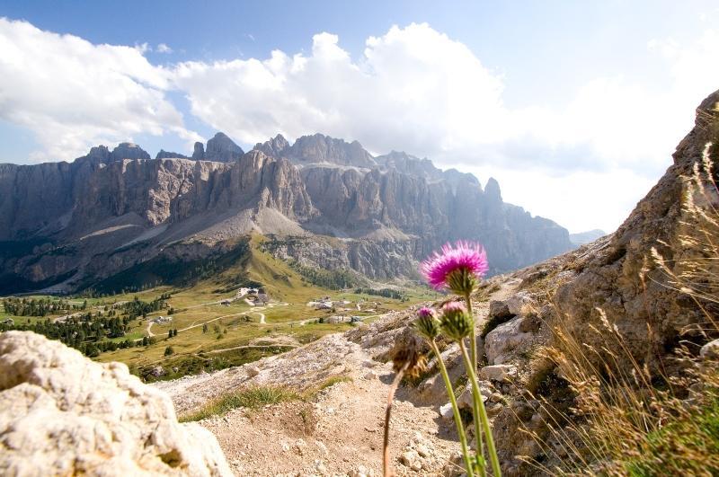 Groedner Joch und Sellagruppe Dolomiten Alpen